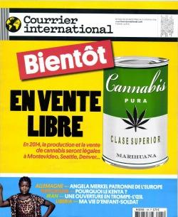 presse française polyglotcoach.jpg