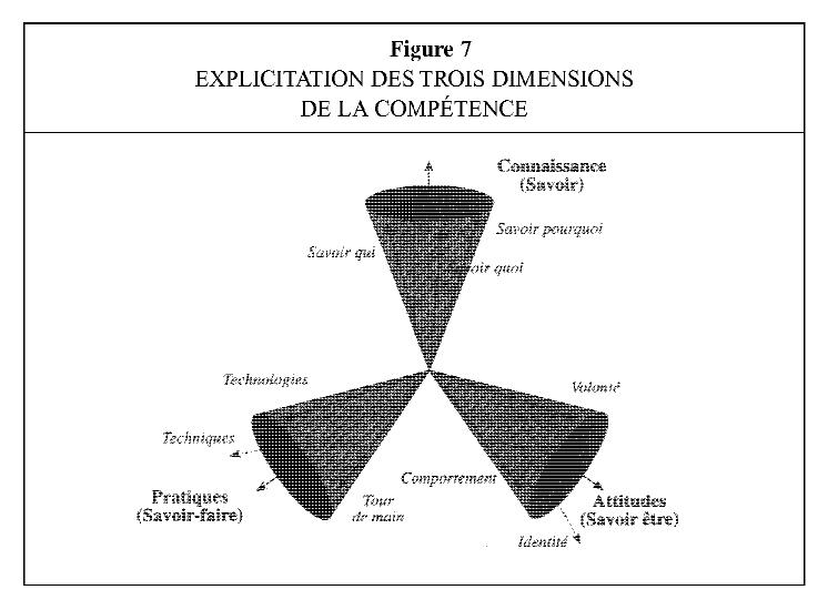 dimensions de la compétence.png