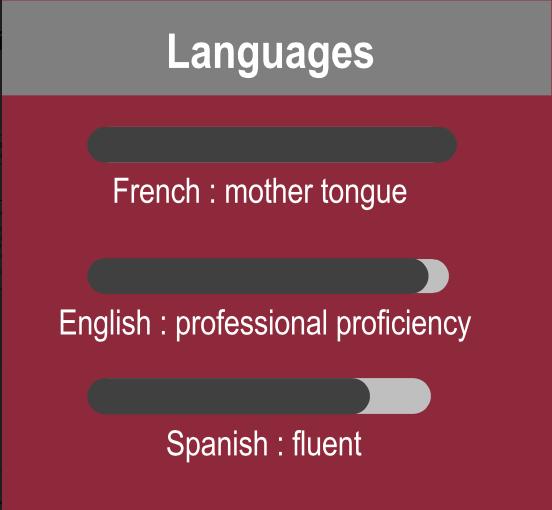 exemple de catégorie langue dans un CV en anglais polyglotcoach
