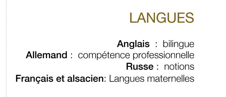 exemple de catégorie langue sur un cv.png