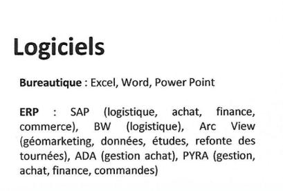 exemple de catégorie logiciels cv français